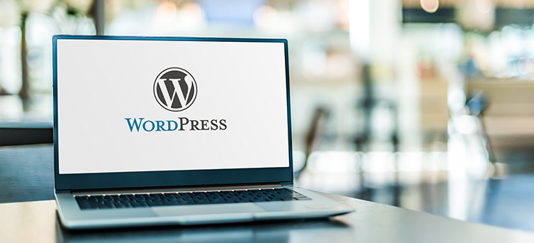 WordPress Website Hero Image
